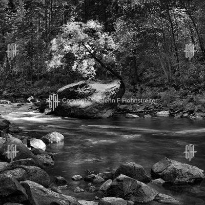 Merced River Autumn